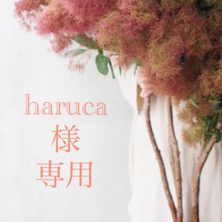 ローラメルシエ(laura mercier)の【専用】ローラメルシエ リップスティクミニ 05(口紅)