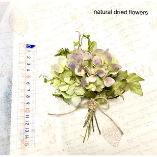 ナチュラルドライフラワー スワッグ 薄紫色ハイドランジアとグリーンリーフ(ドライフラワー)