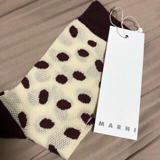 Marni - MARNI 靴下