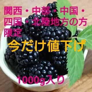 ★25日までの値下げ★ 初物!地域別 送料込 冷凍 ブラックベリー 1000g(フルーツ)