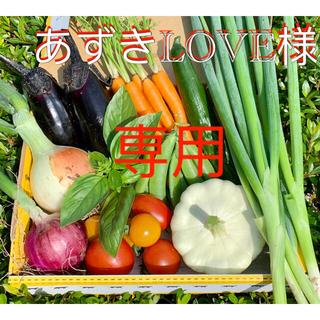 畑直送 無農薬野菜(野菜)
