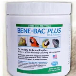 ベネバックプラス BENE-BAC PLUS 鳥専用乳酸菌 (オマケ)