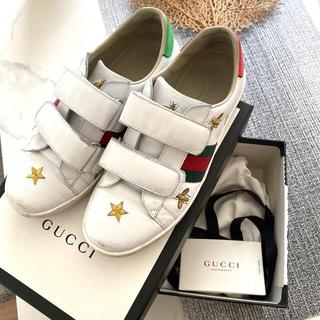 グッチ(Gucci)のgucci  スニーカー エース ヴィー スター 正規品(スニーカー)