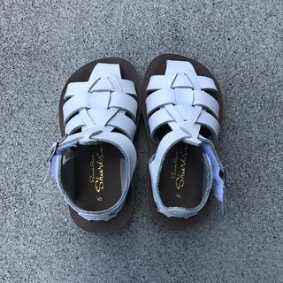 コドモビームス(こども ビームス)のsalt water sandals ソルトウォーターサンダル 5(サンダル)