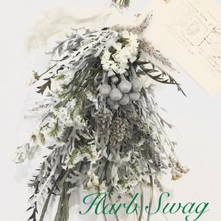香り立つ  ハーブホワイトスワッグ シルバーブルニア ラベンダー ネイティブ(ドライフラワー)