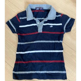 クロコダイル(Crocodile)のcrocodile クロコダイル サイズ 3 ポロシャツ(Tシャツ/カットソー)
