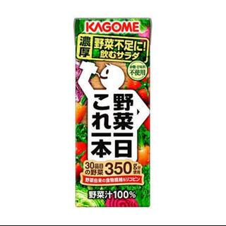 カゴメ(KAGOME)の【7月購入。賞味期限2022年】カゴメ 野菜一日これ一本 24本(野菜)