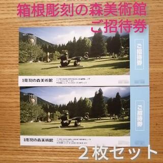 箱根 彫刻の森 美術館 招待券 ペア(その他)