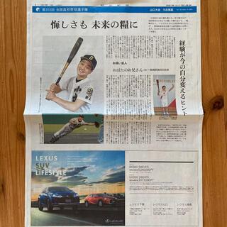 アサヒシンブンシュッパン(朝日新聞出版)の朝日新聞 第103回 全国高校野球選手権 山口大会(印刷物)