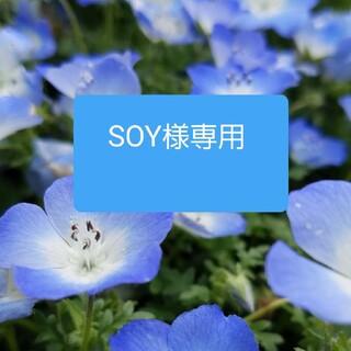 タカシマヤ(髙島屋)のSOY様専用(茶)