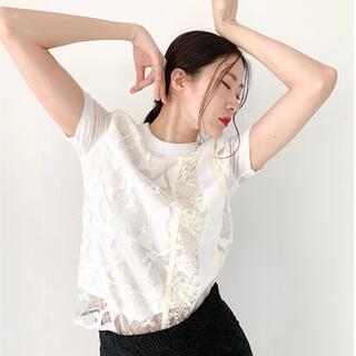 グレースコンチネンタル(GRACE CONTINENTAL)のAdonisis♡ エンブロイダリーチュールラインTシャツ(Tシャツ(半袖/袖なし))
