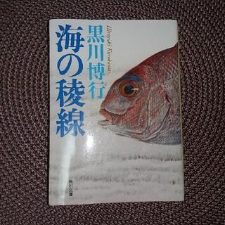 海の稜線(文学/小説)