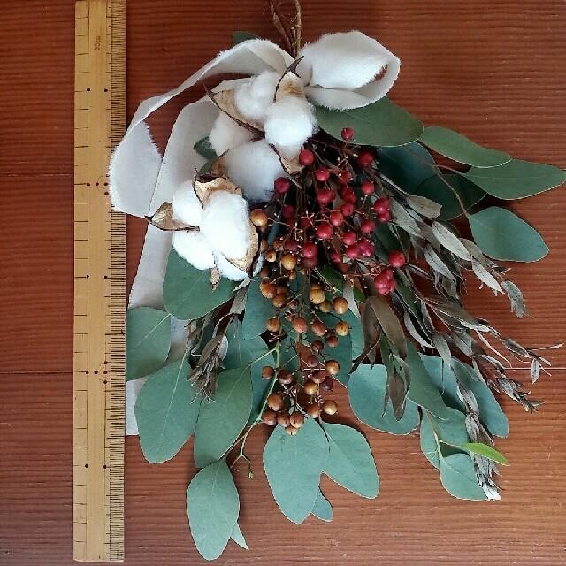 ユーカリ コットン 木の実 ミニスワッグ ドライフラワー ハンドメイドのフラワー/ガーデン(ドライフラワー)の商品写真