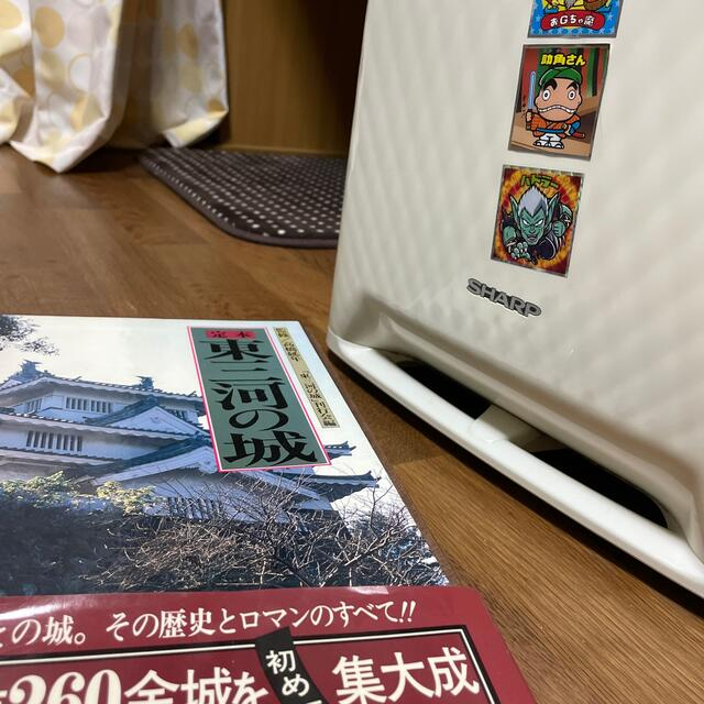 味の素(アジノモト)の東三河の城 チケットのイベント(トークショー/講演会)の商品写真