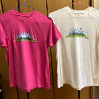 エルエルビーン(L.L.Bean)の【登山や夏フェスに♪】Tシャツ 2枚セット(Tシャツ(半袖/袖なし))