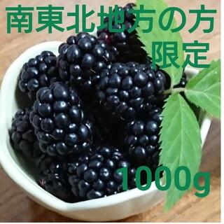 ★今月中までの値下げ★初物!地域別 送料込 冷凍 ブラックベリー 1000g(フルーツ)