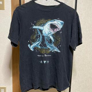 【夏フェスにぴったり♪】シャーク 鮫 Tシャツ(Tシャツ(半袖/袖なし))