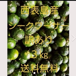 沖縄県西表島産シークヮーサー 訳あり3㎏(フルーツ)