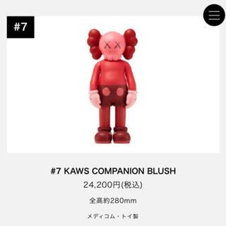 kaws companion blush(その他)