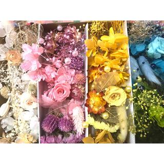 プリザーブドフラワー花材 ドライフラワー花材 ハーバリウムにも(プリザーブドフラワー)