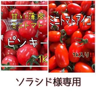 ミニトマトセット!(野菜)
