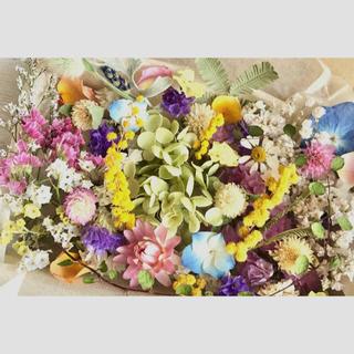 ドライフラワー花材セット❇︎No.206⁑スターチス❇︎アナベル❇︎ミモザ(ドライフラワー)