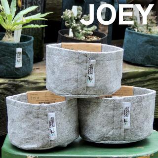ルーツポーチ☆エコ不織布ポット植木鉢【JOEY】グレー3点セット 多肉サボテン(プランター)