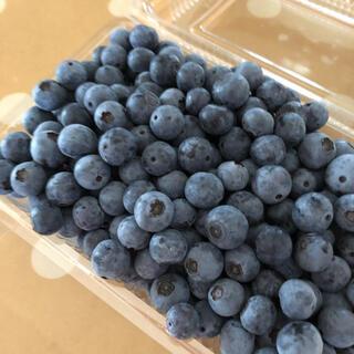 冷凍ブルーベリー 3kg 冷凍便 無農薬(フルーツ)
