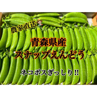 【大好評!】スナップエンドウ 農家直送!(野菜)