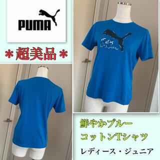 プーマ(PUMA)の着用2回【超美品】《PUMA》グレー迷彩・立体ロゴ★トップス 鮮やかブルー(その他)