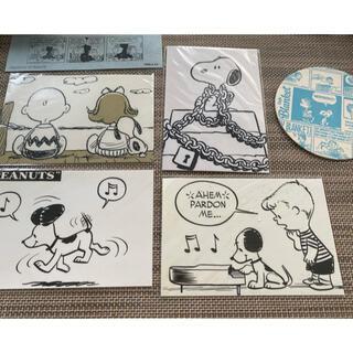 スヌーピー(SNOOPY)の【最終値下】スヌーピーミュージアム ポストカード等(写真/ポストカード)