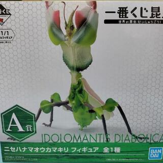 BANDAI - ニセハナマオウカマキリ 昆虫 1番くじ