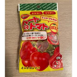 家庭菜園  ハートのトマト(プランター)