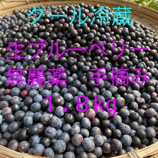 💝お試し価格💝自然農法 無農薬 手摘み生ブルーベリー1.8kg クール冷蔵(フルーツ)