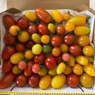 ミニトマト ミックス1キロ(野菜)