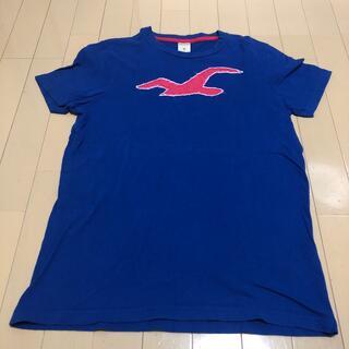 ホリスター(Hollister)のホリスター Tシャツ ブルー Mサイズ(Tシャツ/カットソー(半袖/袖なし))