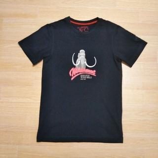 Mammut - MAMMUTマムートTシャツ、半袖Tシャツ【メンズSサイズ】