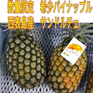 cocojewel 様専用(フルーツ)