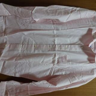 ミラショーン(mila schon)のミラショーンスポーツショートワイドカラー長袖シャツ パステルピンク(シャツ)