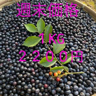 💝週末お試し価格💝自然農法 無農薬 手摘みフレッシュブルーベリー1KG(フルーツ)