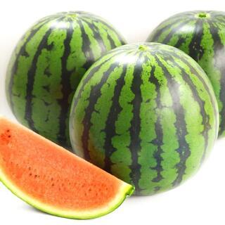 ★【 すいか 中玉 2玉 6~7キロ】★ 西瓜 スイカ デザート 果物 フルーツ(フルーツ)