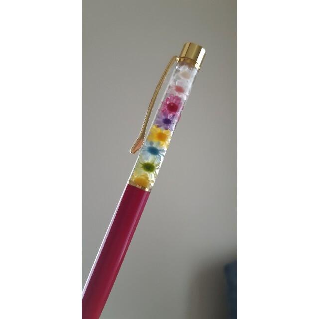 スターフラワーミニ8色 100本+おまけ ハンドメイドのフラワー/ガーデン(ドライフラワー)の商品写真