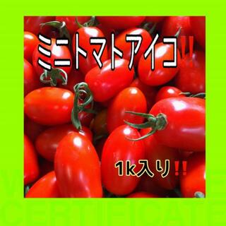 リコピン豊富‼️ミニトマトアイコ1k入❗️(野菜)