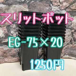 ◎20個◎ロング スリットポット EG-75L slitpot プラ鉢(その他)