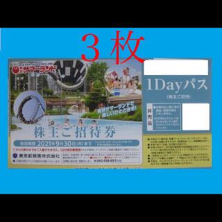 ★当日発送★東京サマーランド1dayパス×3枚(遊園地/テーマパーク)