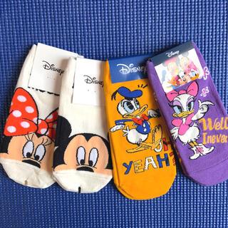 ディズニー(Disney)のディズニー 靴下 レディース(ソックス)