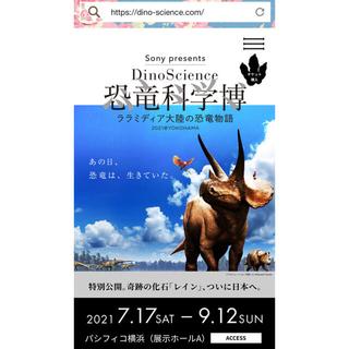 恐竜科学博 平日限定チケット2枚(その他)