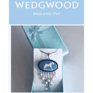 ウェッジウッド(WEDGWOOD)のWEDGWOODネックレス&ブローチ⭐︎イギリス 2way ジャスパー(ネックレス)