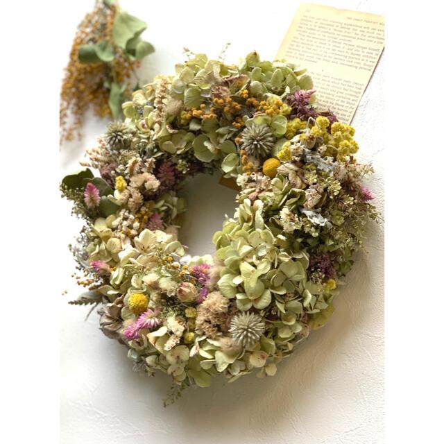 ドライフラワー 爽やかな紫陽花リース 714 ハンドメイドのフラワー/ガーデン(ドライフラワー)の商品写真
