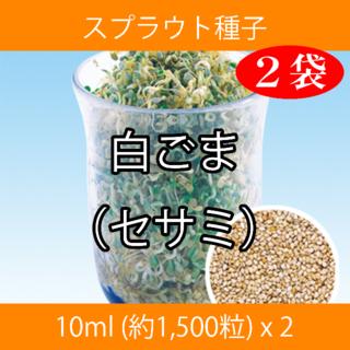 スプラウト種子 S-15 白ごま(セサミ) 10ml 約1,500粒 x 2袋(野菜)
